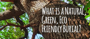 What is a Natural, Green, Eco Friendly Burial?